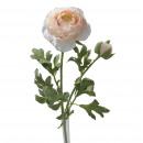 Ranunculus Flogo, 1 flower, 1 bud, L40cm, light pi